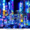 tokyo-november-13-billboards-shinjukus-600w-1012724596